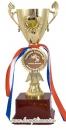 Кубок чаша (вкладыш 35 мм, надпись - на заказ)